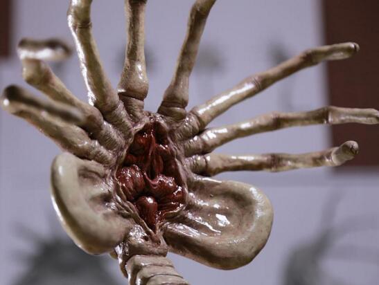 00:20 浏览:      《异形》中的抱脸虫是个血腥恶心的寄生虫,它们以人